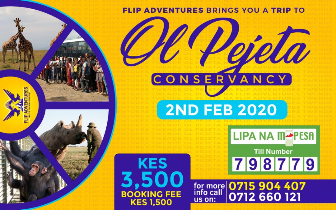 A visit to Ol Pejeta Conservancy with Flip Adventures Poster
